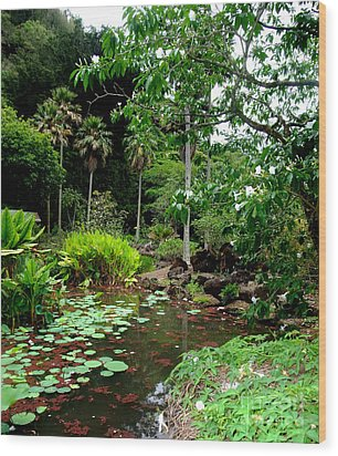 Waimea Valley In The North Shore Of Oahu Hawaii Wood Print by Jim Fitzpatrick