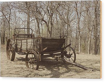 Wood Print featuring the photograph Waiting For A Horse by Kathleen Scanlan
