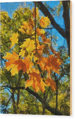 Waiting For Fall Wood Print by Michael Flood