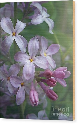 Waiting For Lilacs Wood Print by Kathi Mirto