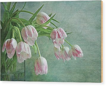 Waiting For Spring Wood Print by Claudia Moeckel