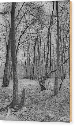Waiting For Spring Wood Print by Thomas  MacPherson Jr