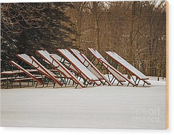 Waiting For Summer - Picnic Tables Wood Print by Mary Machare