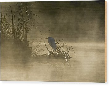 Wood Print featuring the photograph Waiting For The Sun by Steven Sparks