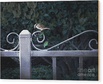 Waiting For Your Call Wood Print by Ellen Cotton
