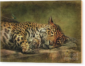 Wake Up Sleepyhead Wood Print by Lois Bryan