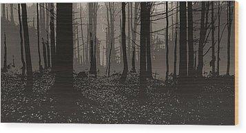 Wald Poster Wood Print by Jaromir Hron