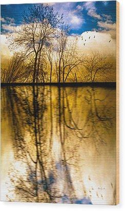 Walk Along The River Wood Print by Bob Orsillo