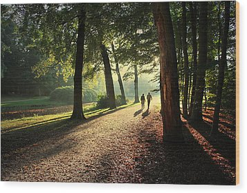 Walk Wood Print by Annie Snel