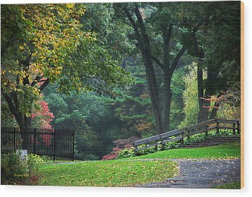Walk In The Park Wood Print by Christina Rollo