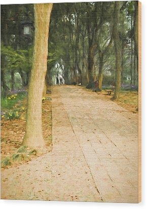 Wood Print featuring the painting Walk In The Park by Ike Krieger
