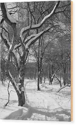 Walk In The Snow Wood Print
