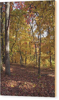 Wood Print featuring the photograph Walk In The Woods - Vertical by Harold Rau
