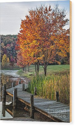 Walk Into Fall Wood Print by Ronald Lutz
