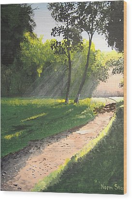 Walk Into The Light Wood Print by Norm Starks