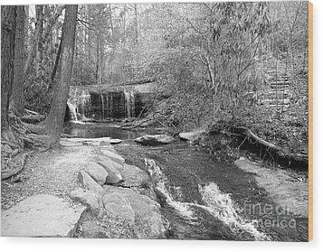 Walk To The Waterfall Wood Print by Carol Groenen