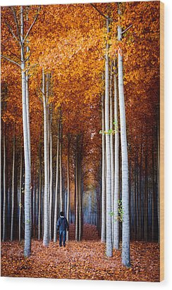 Walking Among Giants Wood Print