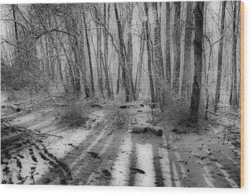 Walking  Amongst Shadows Wood Print by Thomas  MacPherson Jr