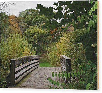 Walking Bridge Wood Print by Bruce Bley