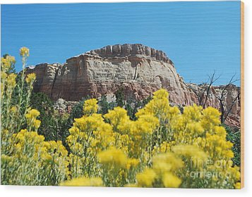 Wood Print featuring the photograph Walking Ghost Ranch by William Wyckoff