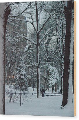 Walking In Snowy Central Park At Dusk Wood Print