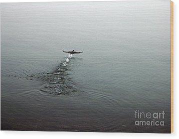 Walking On Water Wood Print by Randi Grace Nilsberg