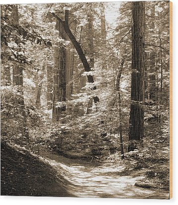 Walking Through The Redwoods Wood Print by Mike McGlothlen