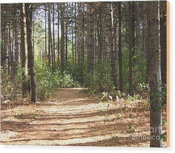 Walking Trail Wood Print by Margaret McDermott