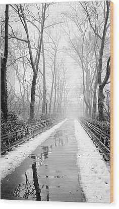Wood Print featuring the photograph Walkway Snow And Fog Nyc by Dave Beckerman