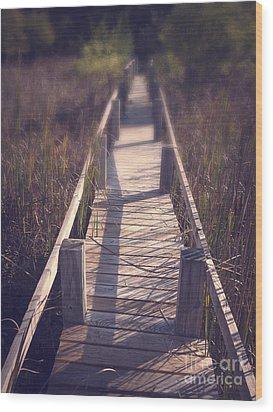 Walkway Through The Reeds Appalachian Trail Wood Print by Edward Fielding