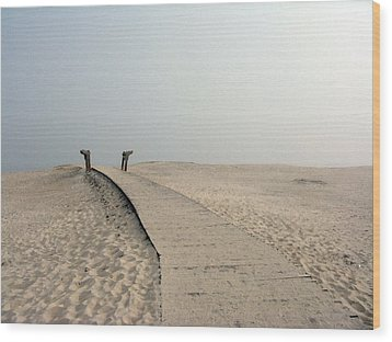 Walkway To Thoughts Wood Print by Patricia Januszkiewicz