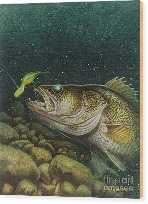 Walleye And Crank Bait Wood Print by Jon Q Wright