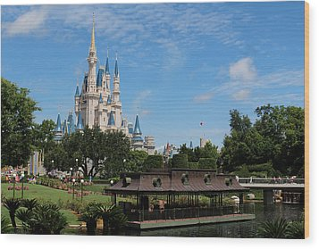 Walt Disney World Orlando Wood Print by Pixabay