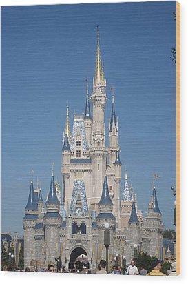 Walt Disney World Resort - Magic Kingdom - 1212129 Wood Print by DC Photographer