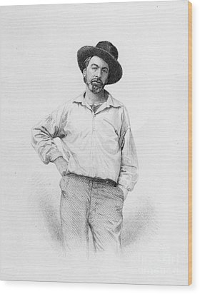 Walt Whitman Frontispiece To Leaves Of Grass Wood Print by American School