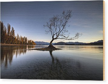 Wanaka - That Tree 2 Wood Print