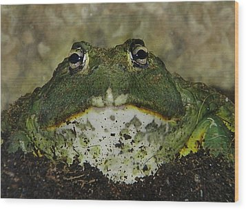 Wood Print featuring the photograph Wanna Smooch? by Ruth Jolly