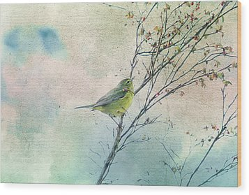 Warbler In A Huckleberry Bush Wood Print by Peggy Collins