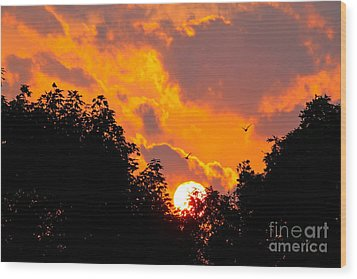 Wood Print featuring the photograph Warm Summer Sunset by Jay Nodianos
