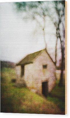Warner Park Springhouse Wood Print by David Morel