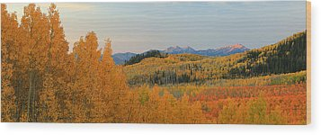 Wasatch Gold Wood Print by Johnny Adolphson