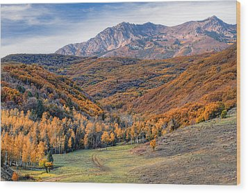 Wasatch Moutains Utah Wood Print