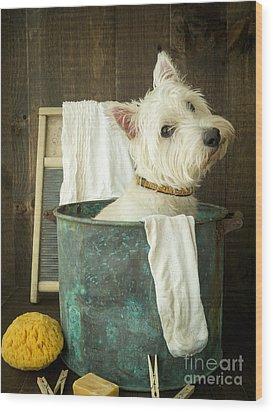 Wash Day Wood Print by Edward Fielding
