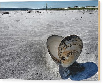 Washed Ashore Wood Print by Janice Drew