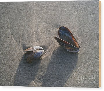 Washed Up Wood Print by Drew Shourd