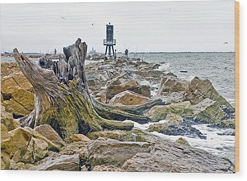Washed Up Wood Print by John Collins