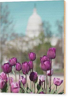Washington Dc Wood Print by Kim Fearheiley