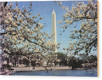 Washington Monument Cherry Blossoms Wood Print