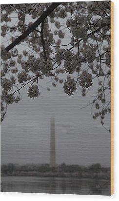 Washington Monument - Cherry Blossoms - Washington Dc - 011337 Wood Print by DC Photographer