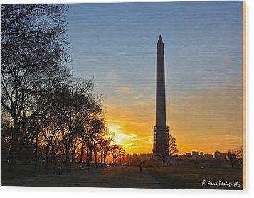 Washington Monument Under Repair Wood Print